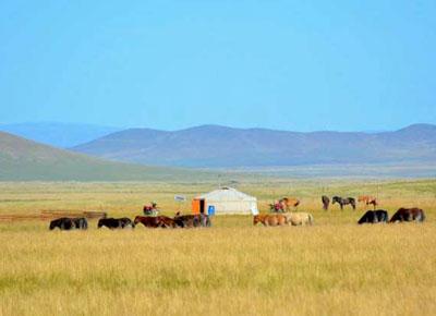 Osten Mongolei Reisen