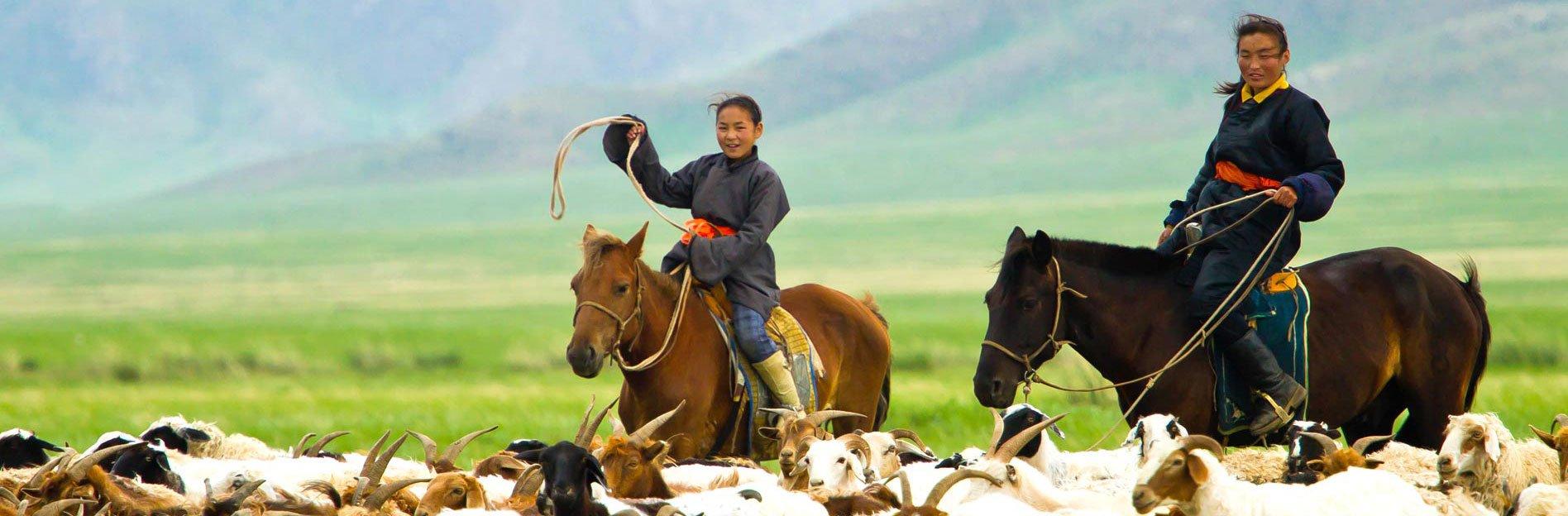 Mongolei Reisen Amicus Mongolei Reiseveranstalter